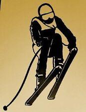 Ski, Skier, Snow, Sport, Skiing, Wall art, Metal Art, Wall Decor, Downhill,Gift