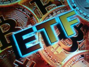 Domain name  ETF BTC.BID