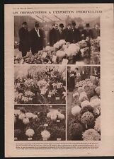 Chrysanthème Exposition Horticulture Fleurs Flowers Poincaré 1919 ILLUSTRATION