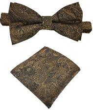 Fliege + Einstecktuch Schleife Smokingfliege Binder de Luxe 428 braun Krawatten