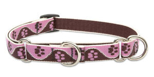 """Lupine Combo Collar 3/4"""" TICKLED PINK 10""""-14"""" Pink Brown Cream Paw Prints NWT"""