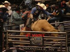 """RARE TROY DUNN on WHITE LINE ACTION PBR PROFESSIONAL BULL RIDING 8"""" X 10"""" PHOTO"""