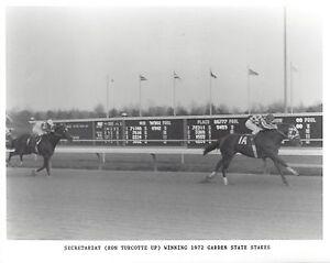 SECRETARIAT 8X10 PHOTO HORSE RACING PICTURE JOCKEY RON TURCOTTE GARDEN STAKES