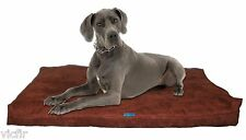 """Shredded Memory Foam Orthopedic Dog bed, Extra Large Breed Dogs,55""""x37"""",Brown"""