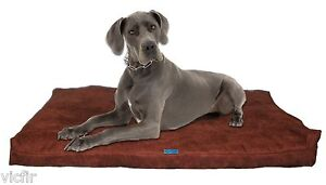 "Shredded Memory Foam Orthopedic Dog bed, Extra Large Breed Dogs,55""x37"",Brown"