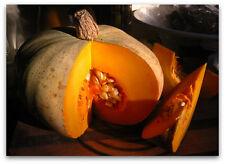 Reino Unido: sweet Calabaza, Misti Lau, calabaza de invierno, Misti Kumra, semillas de calabaza, nogal blanco americano 10
