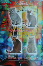 ** Domestic Cats   s /s Tchad  2013 MNH  #E094