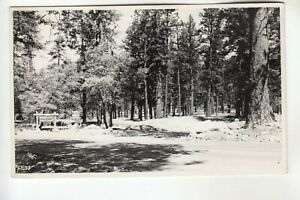 Real Photo Postcard Entrance to Barton Flats Public Camps near Big Bear CA
