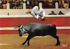 BF40394 courses de vaches intervilles dupla saut   corrida toros bull taureau
