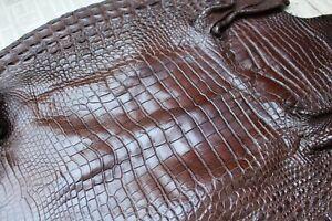 Big Size Genuine Real Alligator Crocodile Skin Leather Exotic Pelt taxidermy #C4