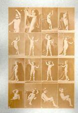 C26 Calavas photo étude pour peintre vintage albumen print albuminé nus Femme