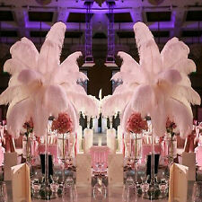 10X Ostrich Feather 30cm DIY Crafts Event Feathers Beautiful Wedding Party AU