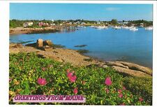 Vintage Postcard South Bristol Maine ME Coastal Scene Forsythia Boats