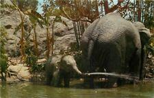 Amusement Anaheim California 1950s Disneyland Playful Elephants Postcard 6885
