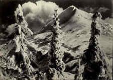 NORWEGEN Norge Norway ~1940/50 Winter Schnee Landschaft, verschneite Bäume Tree