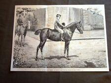 Sua Altezza Reale il Principe di Napoli nel 1880 Su cavallo arabo al Quirinale