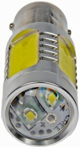 License Light Bulb fits 1980 Pontiac Grand Prix  DORMAN - CONDUCT-TITE