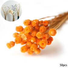 50 pcs Home Decor Natural Dried Flower Bouquet Decorative Dried Flowers Orange