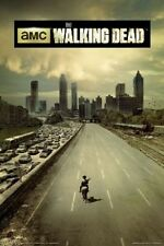 TELEVISION POSTER The Walking Dead Season I