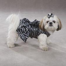 Zack and Zoey Platinum Print Zebra Dog Puppy Pet Dress Black Gray Size: SMALL