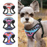 Soft Mesh Dog Harness for Small Medium Dogs Reflective Dog Cat Safety Vest XS-L