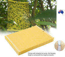 Yellow Sticky Glue paper Insect Trap Catcher Killer Fly Aphids Wasp AU