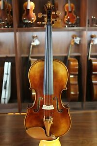 Advanced Master Handmade 4/4 Strad Violin with Fine Tone (Best Gift)