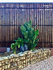 BAMBOO FENCE PANEL/PRIVACY SCREEN - 2.4M H x 0.9M W PREMIUM QUALITY - DUE 11/4
