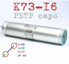 250v 1uf 1000nf K73 16 Polyethylene Hi End Petp Audio Acoustic Capacitor