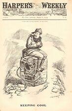 Political Cartoon, Roosevelt, Alaska, Keeping Cool, Vintage 1904 Antique Print