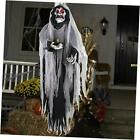Halloween Hanging Ghost, 5.5 Ft Large Life size Halloween Prop Skull with Black