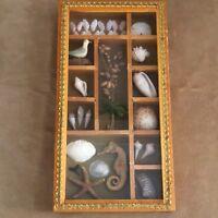 Sea Shell shadow box vintage handmade beach nautical decor picture mid century