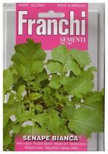 40 Semi/Seeds SENAPE Bianca