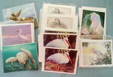 Lot of 58 Note Cards~ Water Birds, Manatees, Pelicans ~Paula Elliott & Telstar