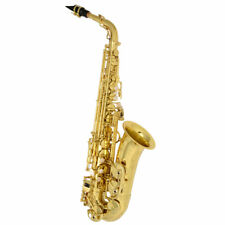 Yanagisawa Alto Sax A-WO10 with semi hard case EMS New  japan Alto Saxophone