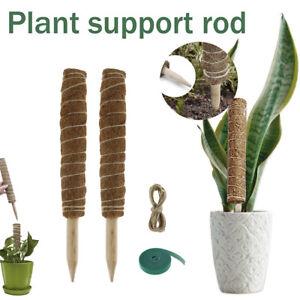 2x Pflanzstab Kokos Stab Pflanzen Rankstab Stäbe Kletterhilfe Für Zimmerpflanzen