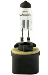 Fog Light Bulb-SLE Eiko 880 New