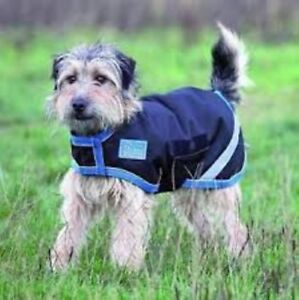 Waterproof & Breathable Dog Coat - Black & Turquoise - XXX Small - Shires