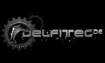 DELFITEC.de