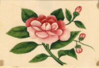 Pink Peony Pith Painting – Original early 19th-century watercolour painting
