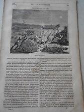 1833  Pêche des Tortues Article de presse Gravure