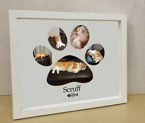 Cat lovers gift pet frame Personalised printed photo framed