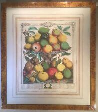 Lovely Large Vintage Print Of Garden Fruits (February) by ROBERT FURBER (1732)