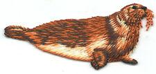 Seal Iron On Patch Mammal Animals Seals