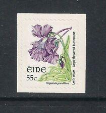 Ireland Eire - 2009 Wild Flowers Butterwort 55c s/a booklet stamp, SG1699d, MNH