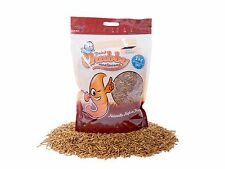 1Kg Chubby Dried Mealworms High Protein Wild Bird Chicken Food Treat