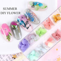 Real Dried Flowers 3D Nail Art Decor Design DIY Tips Manicure 12 Colors Fashion