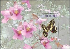 Lesotho 2007 Butterflies/Insects/Flowers/Nature/Conservation 1v m/s (n18302)