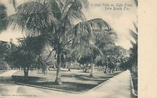 PALM BEACH FL - Vista On Lake Front Rotograph Postcard - udb (pre 1908)
