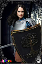 """PLAY TOY 1:6 scale Princess Knight 12"""" Female Warrior Action Figure P012"""